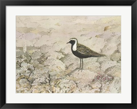 Framed Perched Print