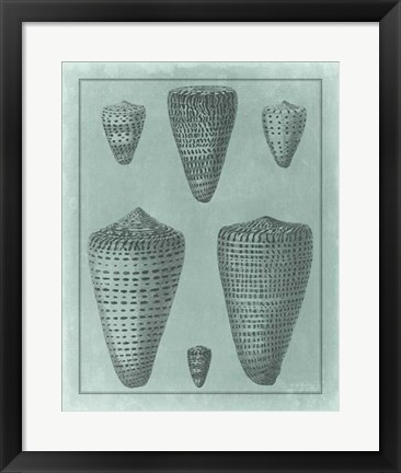 Framed Spa Shell Collection I Print
