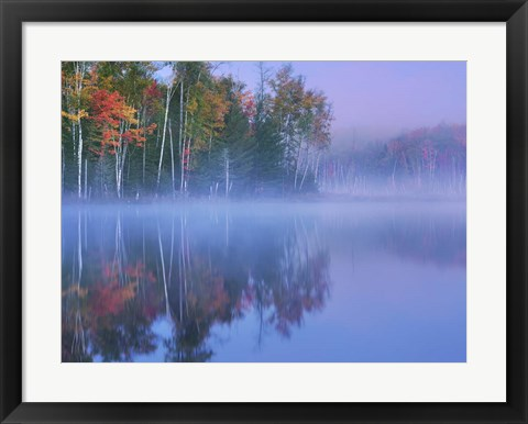 Framed Autumn Morning and Mist Print