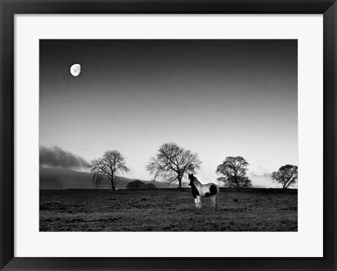 Framed Evening Light IV Print