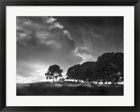 Framed Touched by Sunlight Print