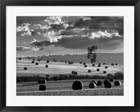 Framed Rolls of Hay Print