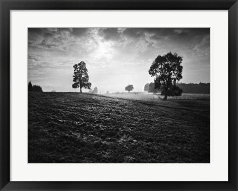Framed Breaking Light Print