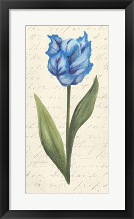 Framed Twin Tulips IV Print