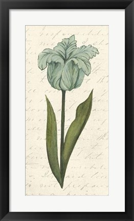 Framed Twin Tulips VI Print