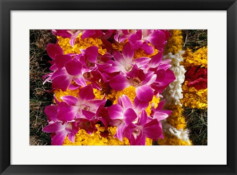 Framed Asia, Singapore. Flowers for sale Print
