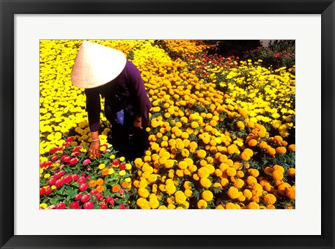 Framed Beautiful Graphic with Woman in Straw Hat and Colorful Flowers Vietnam Mekong Delta Print