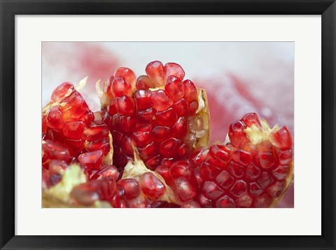 Framed Pomegranate on the street raw or made into juice, Bangkok, Thailand Print