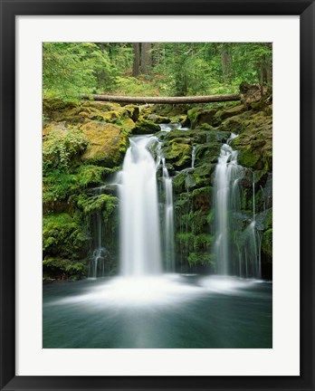 Framed View of Whitehorse Falls, Umpqua National Forest, Oregon Print