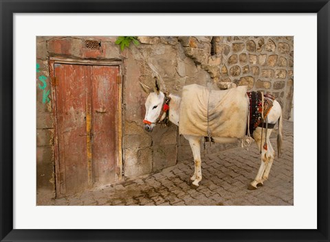 Framed Donkey and Cobbled Streets, Mardin, Turkey Print