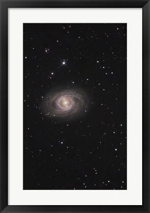 Framed Messier 95, A Barred Spiral Galaxy in the Constellation Leo Print