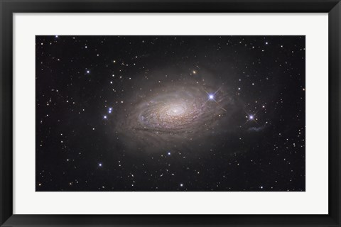 Framed Sunflower Galaxy Print