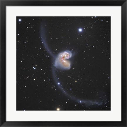 Framed Antennae Galaxies in the constellation Corvus Print