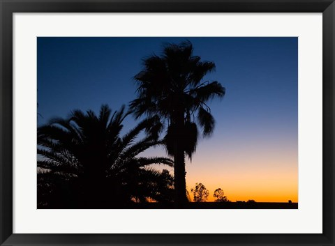 Framed Palm Trees, Sunset, Stuart Highway, Outback, Australia Print