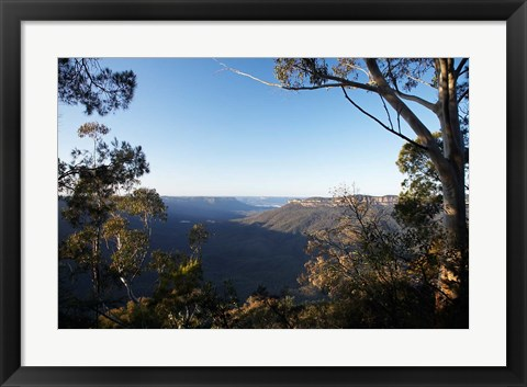 Framed Australia, NSW, Blue Mountains, Jamison Valley Print