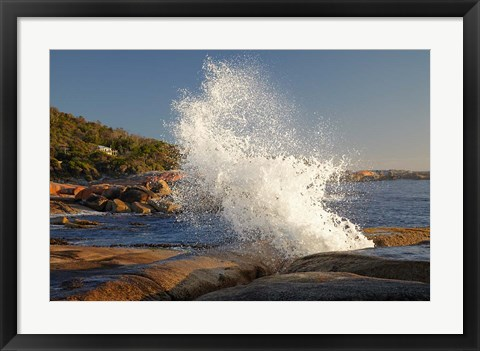 Framed Splash from Blowhole, Bicheno, Tasmania, Australia Print