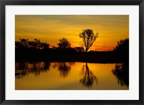 Framed Water Billabong, Kakadu NP, Northern Territory, Australia Print