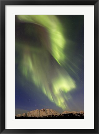 Framed Aurora Borealis over Emerald Lake, Canada Print
