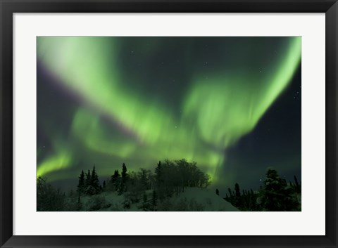 Framed Aurora Borealis Takes Flight Print