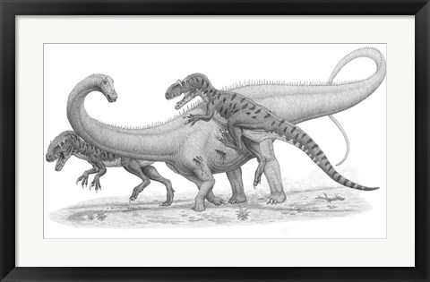 Framed Group of Allosaurus Attack a giant Diplodocus Print