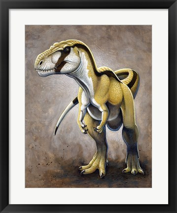 Framed Megalosaurus, a Large Meat-Eating Dinosaur of the Jurassic period Print