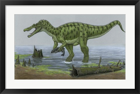 Framed Baryonyx Walkeri Catches a Fish Print