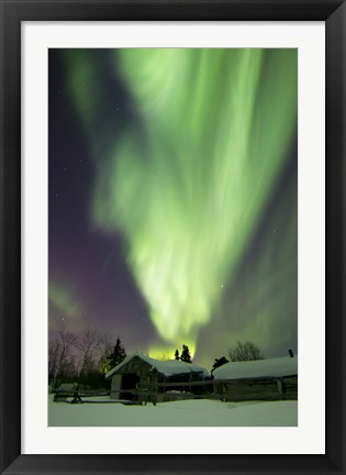 Framed Aurora Borealis and the Big Dipper Whitehorse, Yukon, Canada Print