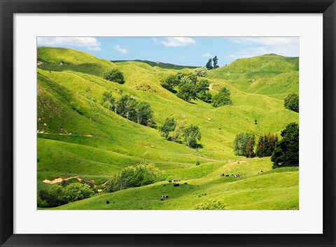 Framed Farmland near Gisborne, New Zealand Print