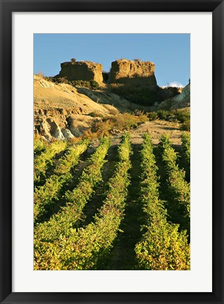 Framed Mt Difficulty Vineyard and Historic Sluicings, Bannockburn, South Island, New Zealand Print