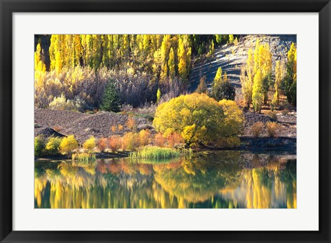 Framed Autumn Colours, Lake Dunstan, Central Otago, New Zealand Print