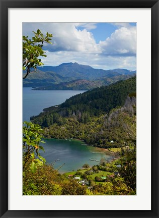 Framed Queen Charlotte Track, Marlborough Sounds, South Island, New Zealand Print