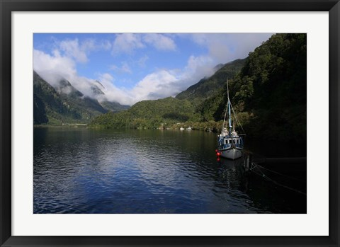 Framed Doubtful Sound, South Island, New Zealand Print