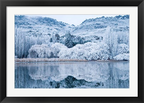 Framed Reflections and Hoar Frost, Butchers Dam, near Alexandra, Central Otago, South Island, New Zealand Print