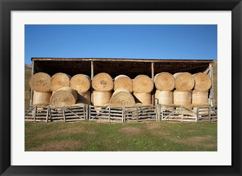 Framed Hay Barn, Ahuriri Valley, North Otago, South Island, New Zealand Print