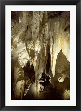 Framed Stalactites, Ruakuri Caves, North Island, New Zealand Print