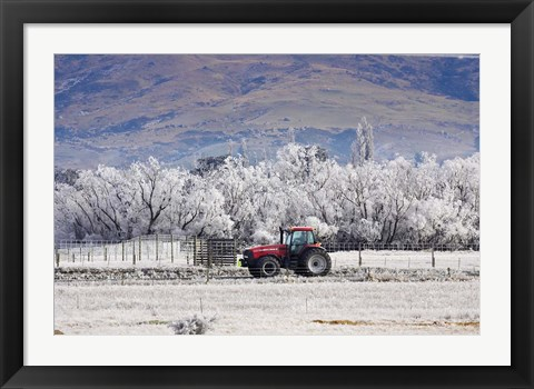 Framed Tractor and Hoar Frost, Sutton, Otago, South Island, New Zealand Print