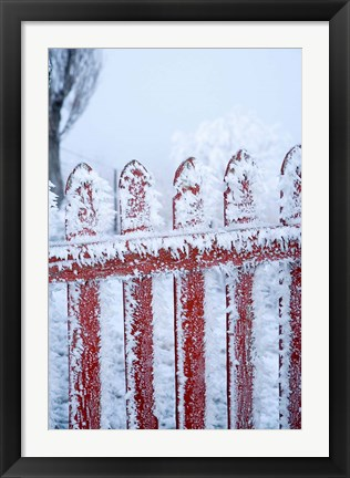 Framed Frost on Gate, Mitchell's Cottage and Hoar Frost, Fruitlands, near Alexandra, Central Otago, South Island, New Zealand Print