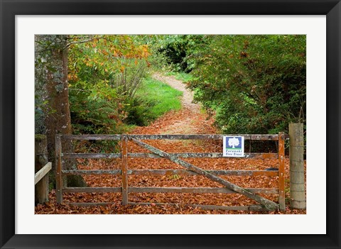 Framed Gate and Oak Leaves, Te Wera Arboretum, Forgotten World Highway, Taranaki, North Island, New Zealand Print