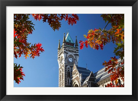 Framed Clock Tower, Dunedin, South Island, New Zealand Print
