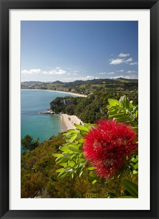 Framed Coastline, Cooks Beach, North Island, New Zealand Print
