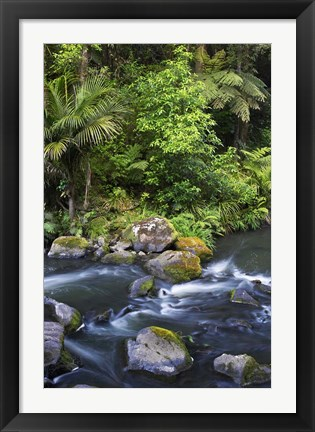 Framed New Zealand, Hatea River, Whangarei Falls, Northland Print