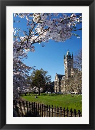 Framed Spring, Clock Tower, Dunedin, South Island, New Zealand (vertical) Print