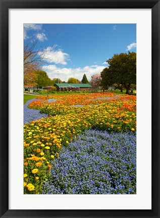 Framed Flower garden, Pollard Park, Blenheim, Marlborough, South Island, New Zealand (vertical) Print