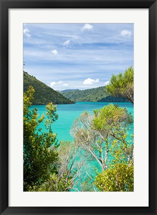 Framed New Zealand, South Island, Marlborough, Nydia Bay Print