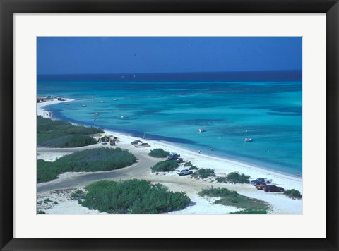 Framed Palm Beach,  Aruba, Caribbean Print