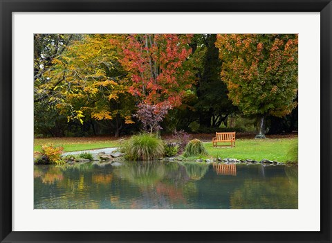 Framed Autumn Color in Hagley Park, Christchurch, Canterbury, New Zealand Print
