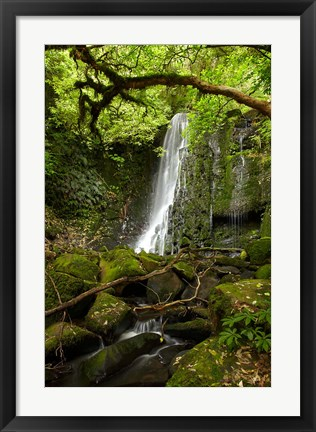 Framed Matai Falls, Catlins, South Otago, South Island, New Zealand Print