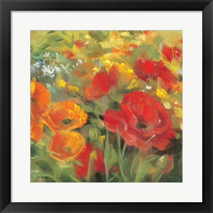 Framed Oriental Poppy Field I Print