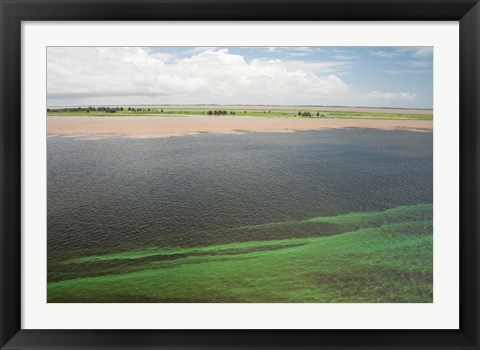 Framed Brazil, Amazon River, Santarem Meeting of the Waters Algae bloom Print