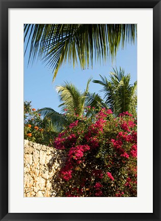 Framed Viva Wyndham Dominicus Beach, Bayahibe, Dominican Republic Print